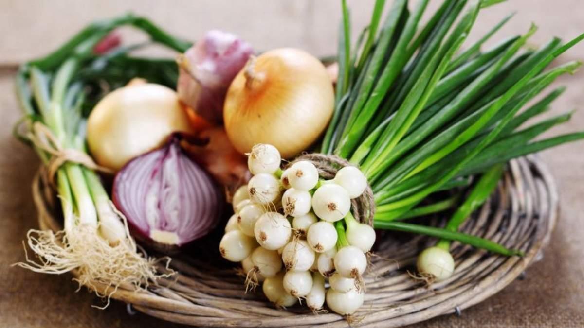 Чому потрібно їсти цибулю: Фус озвучила цікаві факти