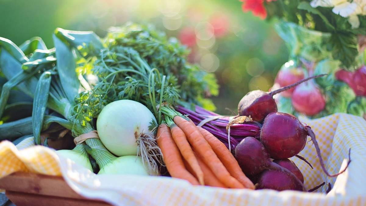 Що їсти, щоб зігрітися: дієтологиня назвала корисні продукти
